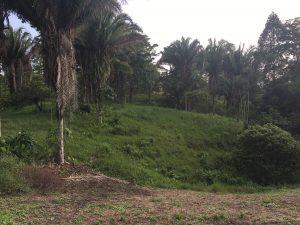 ministerio-casa-verde-new-project-1