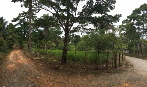 ministerio-casa-verde-new-project-2016 (2)